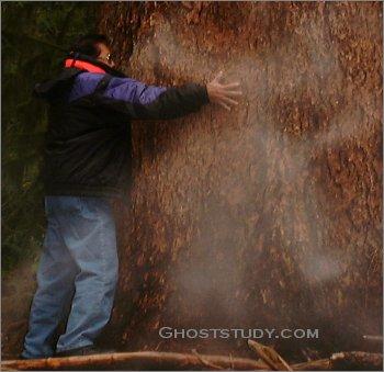 Человек и призрак около дерева