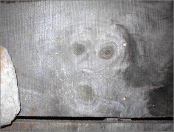 Кричащий призрак